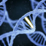 DNA for paternity concept