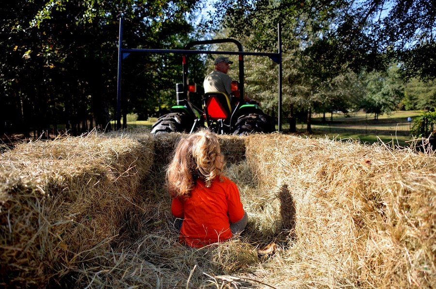 bigstock Young girl going on a hay ride