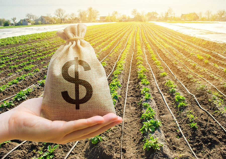 money bag and crops